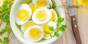 Kiaušinių dieta